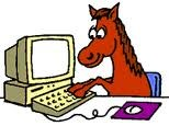Horse on computer
