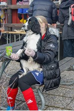 Tr_ningscup_2013_485